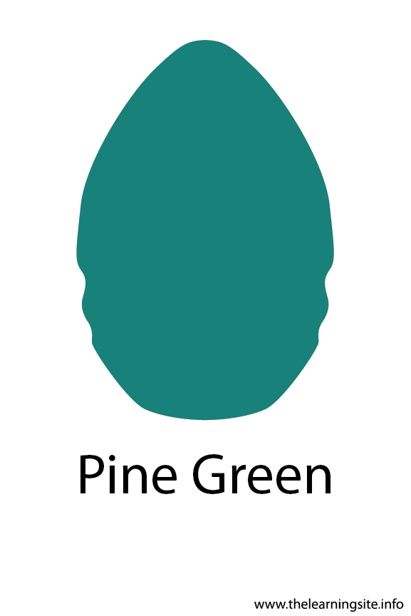 Pine Green Crayola Color Flashcard Illustration