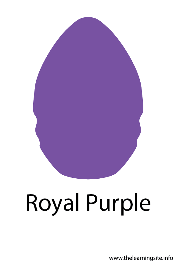 Royal Purple Crayola Color Flashcard Illustration
