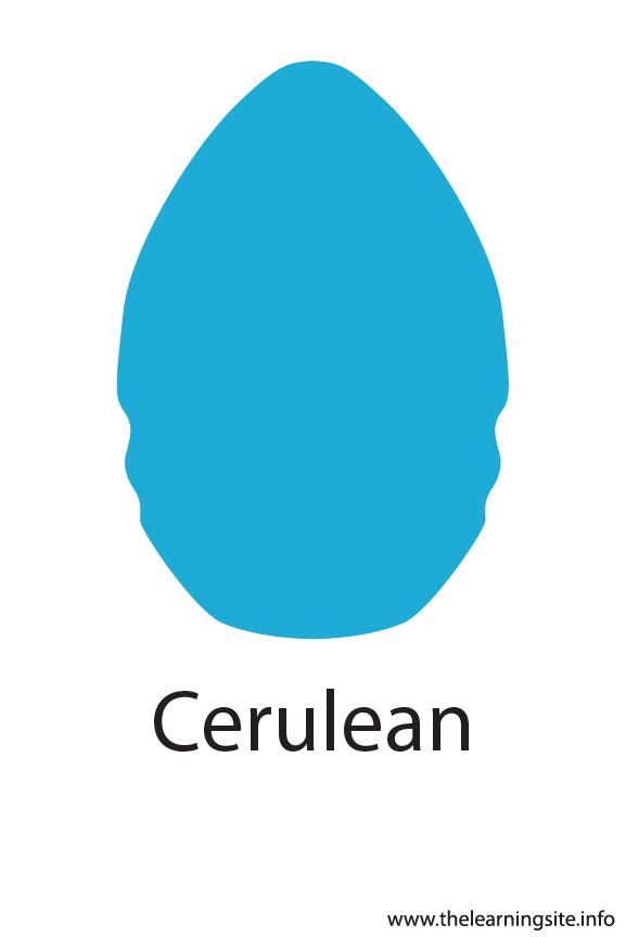 Cerulean Crayola Color Flashcard Illustration