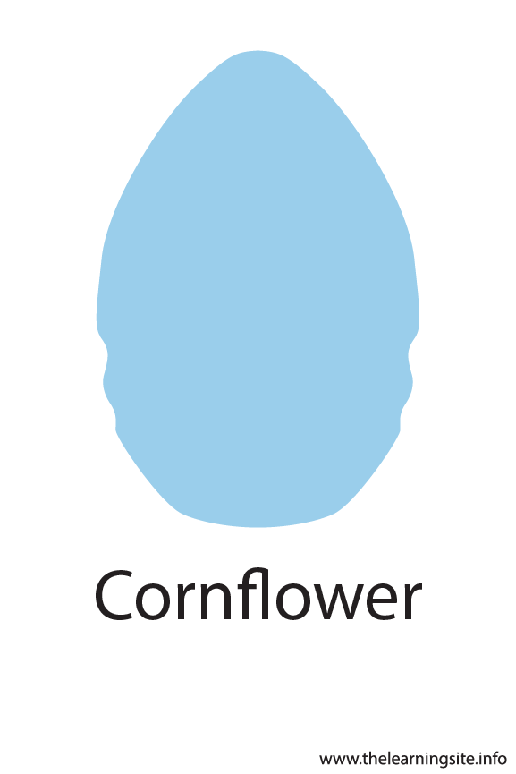 Cornflower Crayola Color Flashcard Illustration