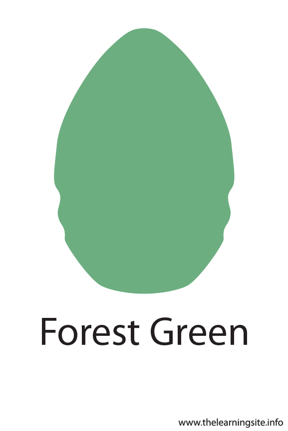 Forest Green Crayola Color Flashcard Illustration