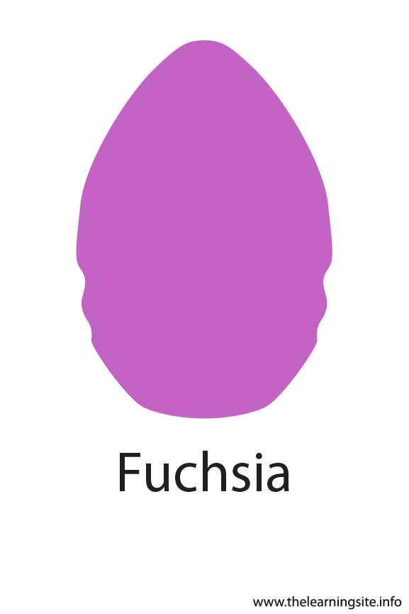Fuchsia Crayola Color Flashcard Illustration