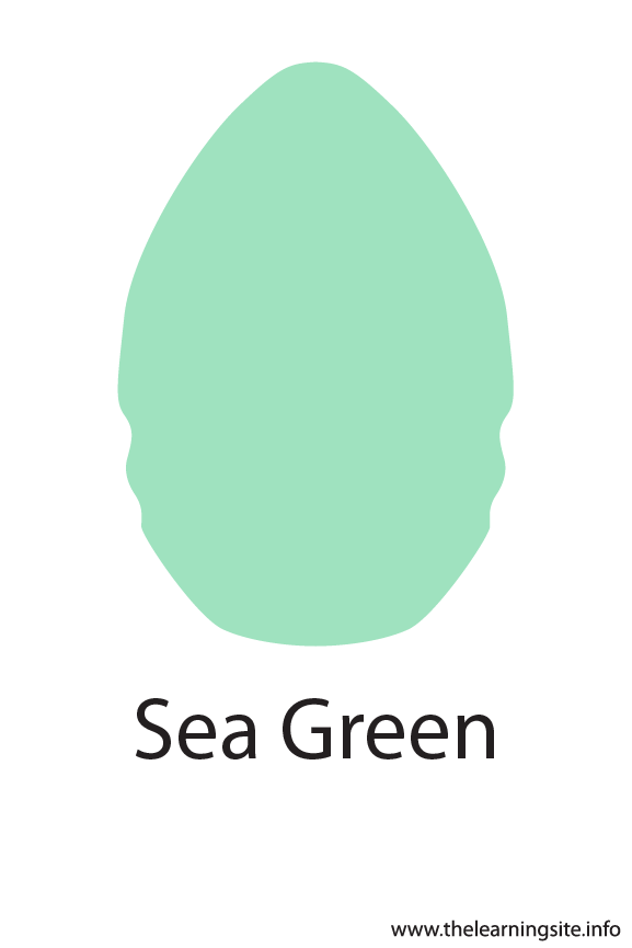 Sea Green Color Flashcard Illustration