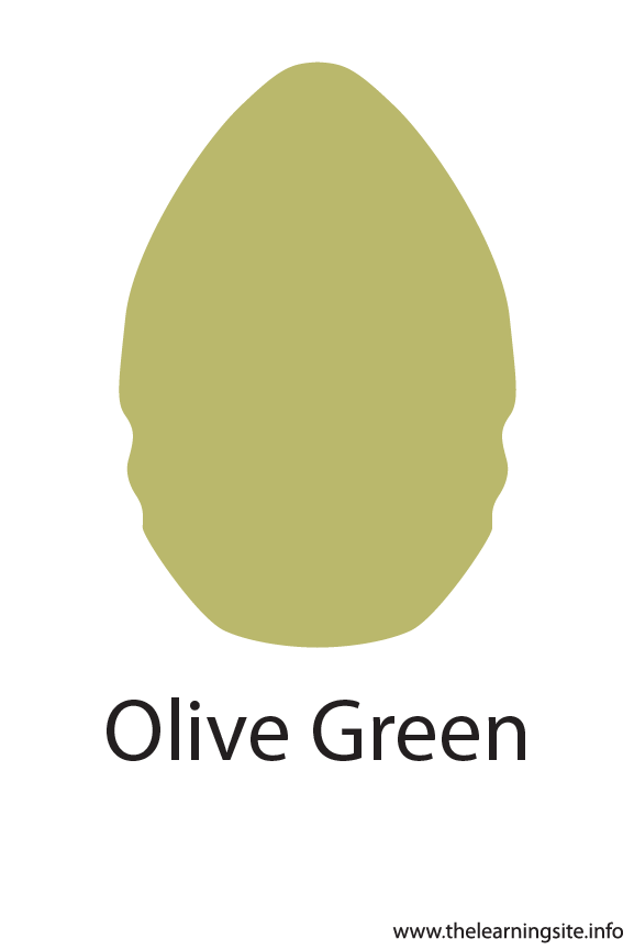 Olive Green Crayola Color Flashcard Illustration