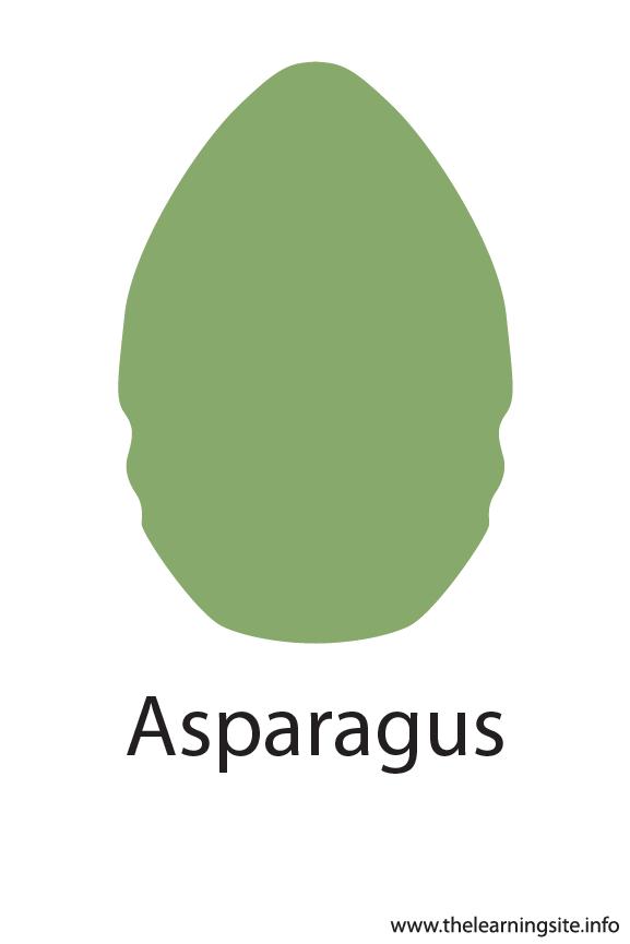 Asparagus Crayola Color Flashcard Illustration