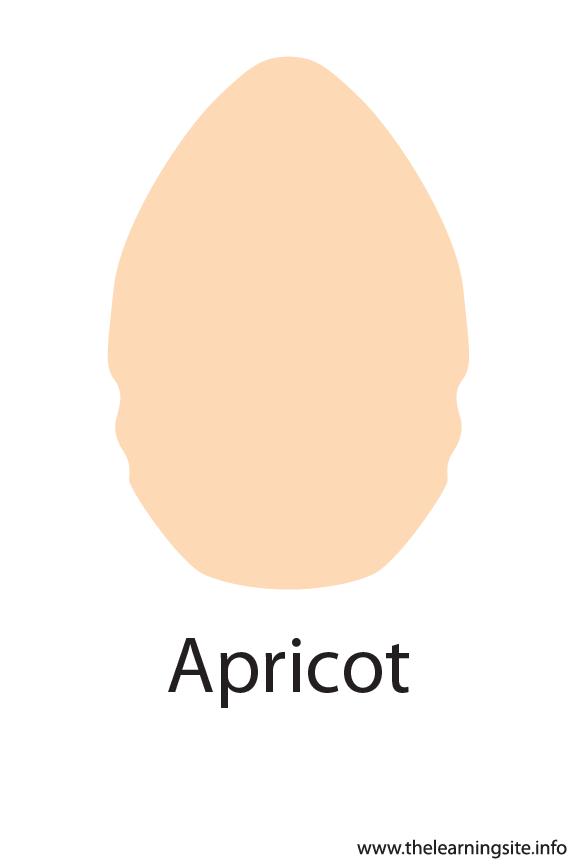 Apricot Crayola Color Flashcard Illustration